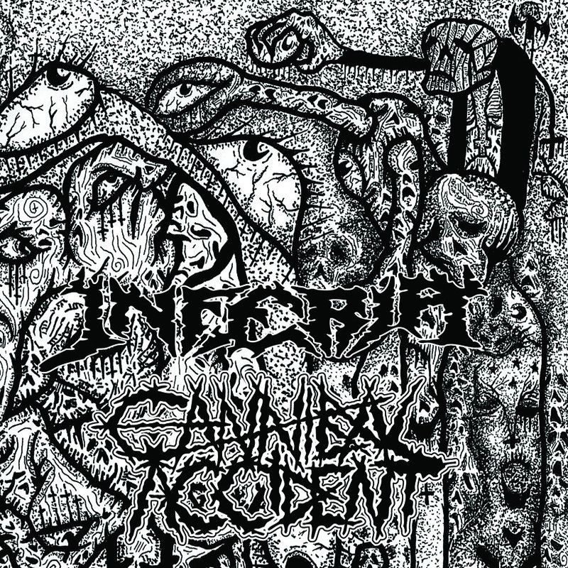 CANNIBAL ACCIDENT Split s Inferia